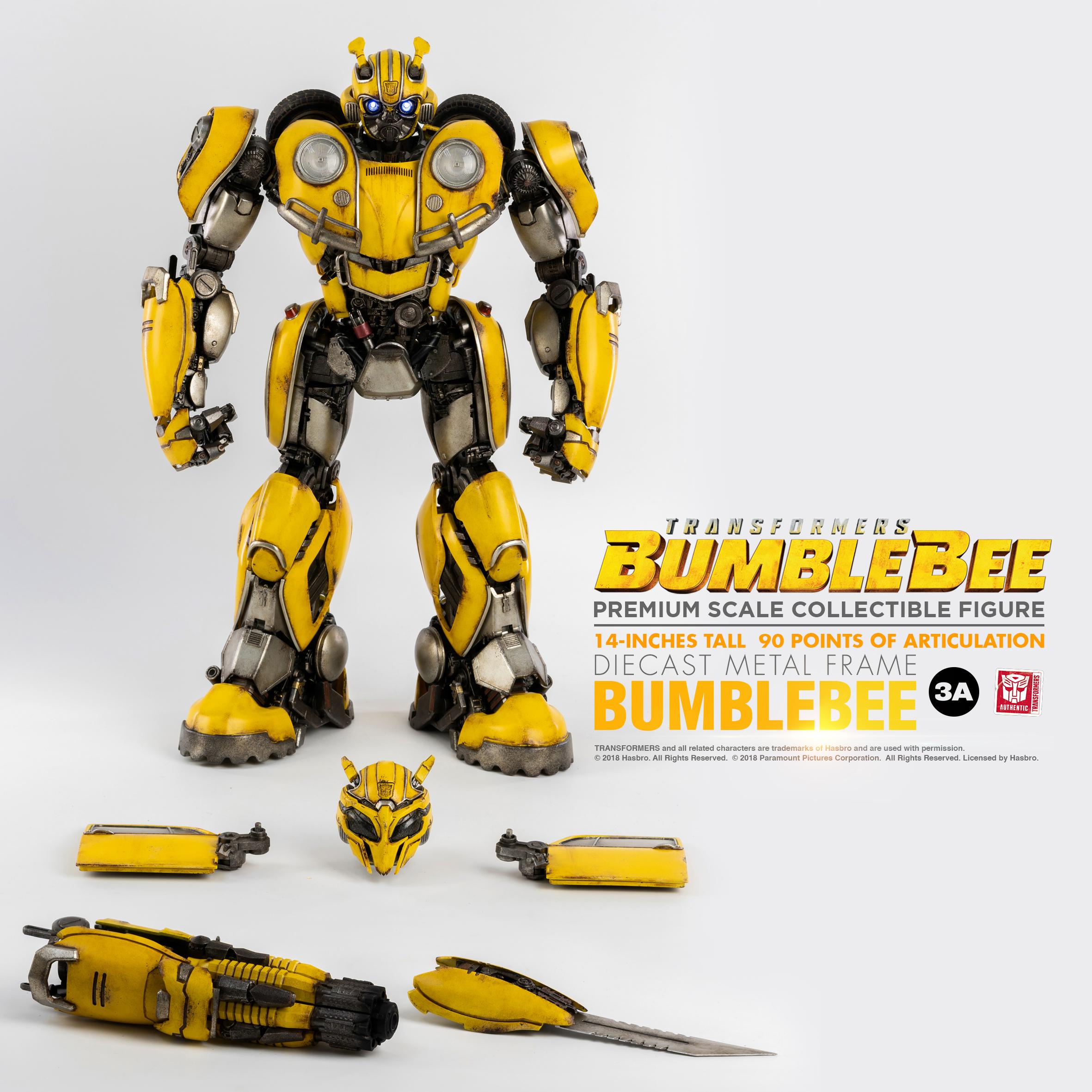 Bumblebee_ENG_PM_09995.jpg