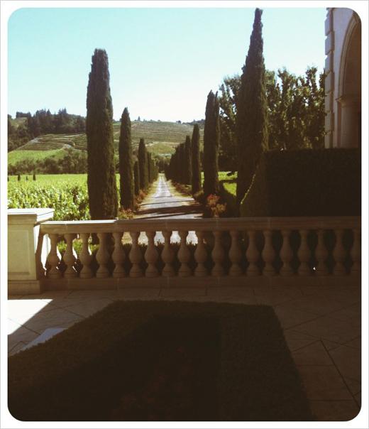 winery-landscape.jpg