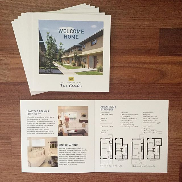 Marketing brochures + floorplans for multiple properties ✔️