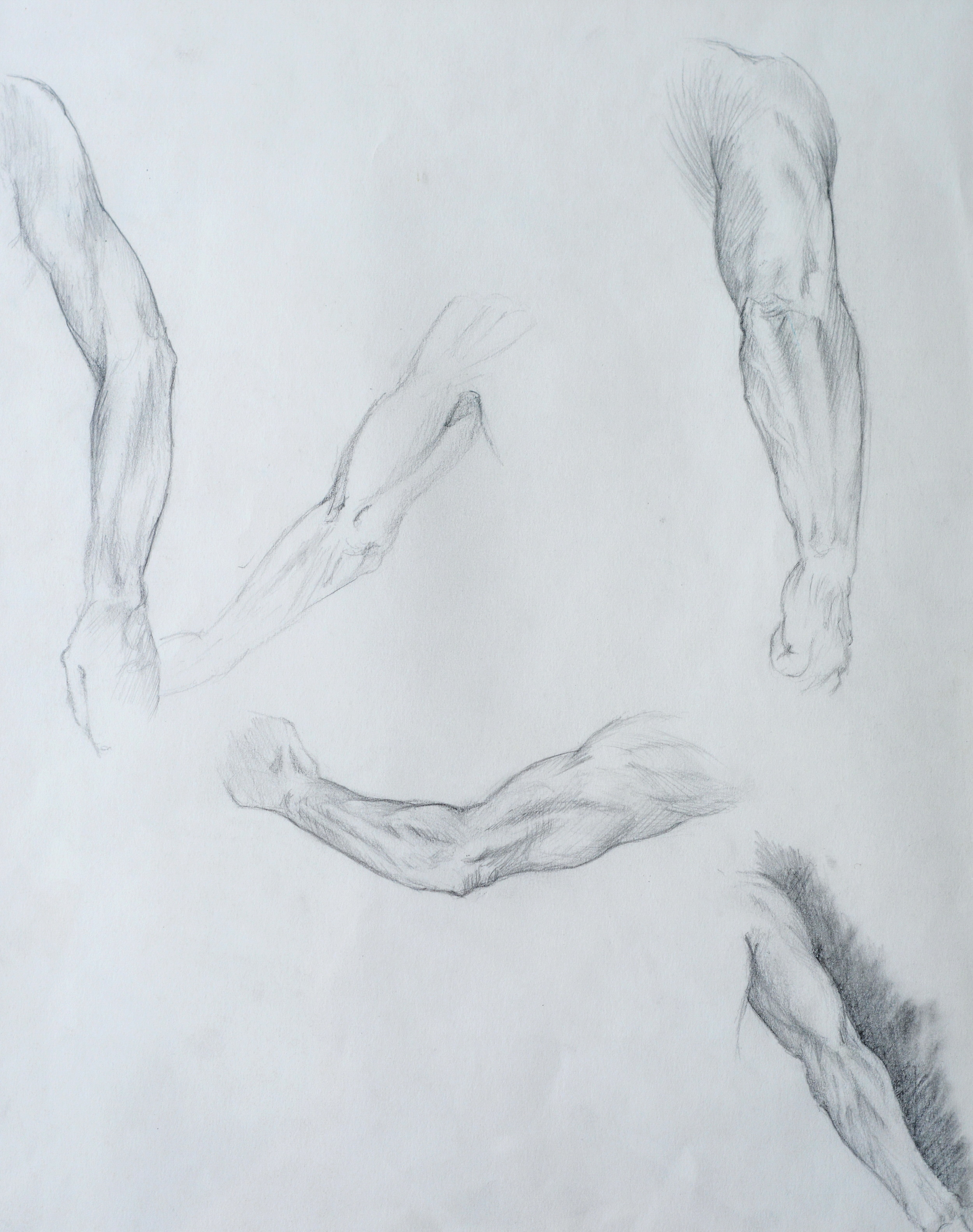 Male Arms  , studies. 1992. Graphite on paper. Available for purchase.