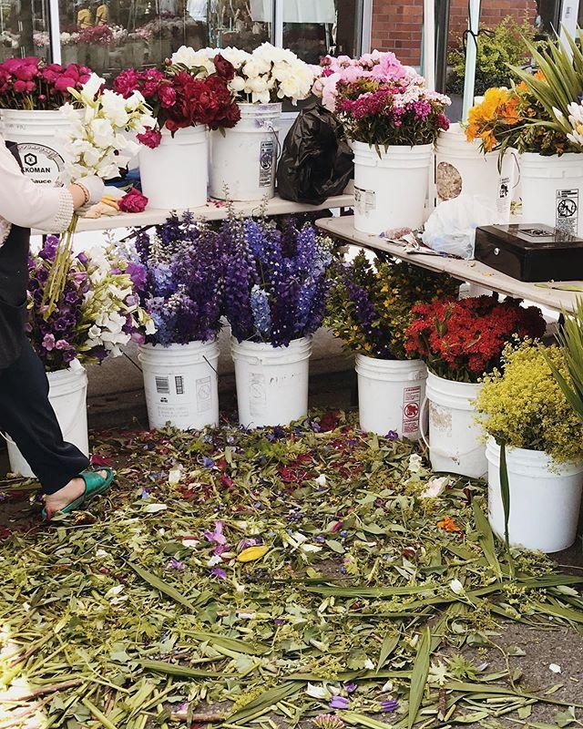 .. market flowers 🖤