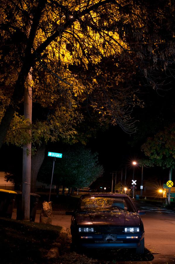 Pancini20111005_IMG_0001.DNG-5.jpg