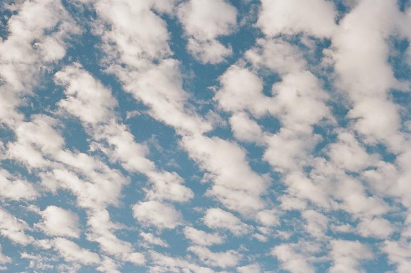 kauai-film-photographer-019.jpg