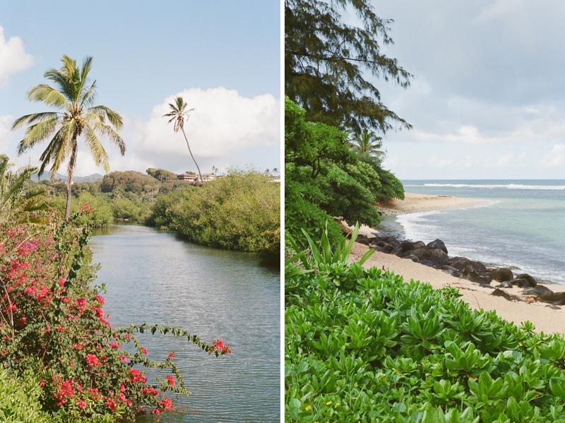 kauai-film-photographer-027.jpg