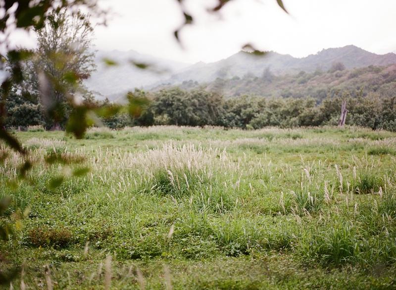 kauai-film-photographer-041.jpg