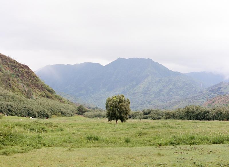 kauai-film-photographer-046.jpg