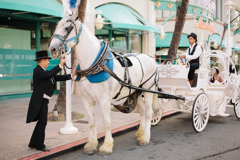 kambra-lawrence-hawaii-wedding-photographer-013.jpg