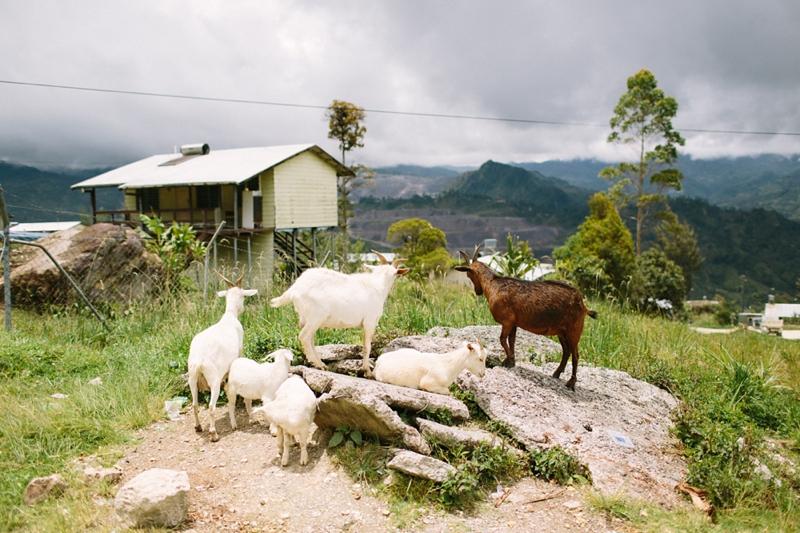 porgera-papua-new-guinea-052.jpg