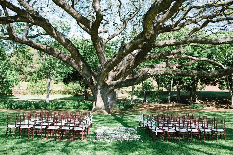 tim-shaina-wedding-the-modern-hawaii-032.jpg