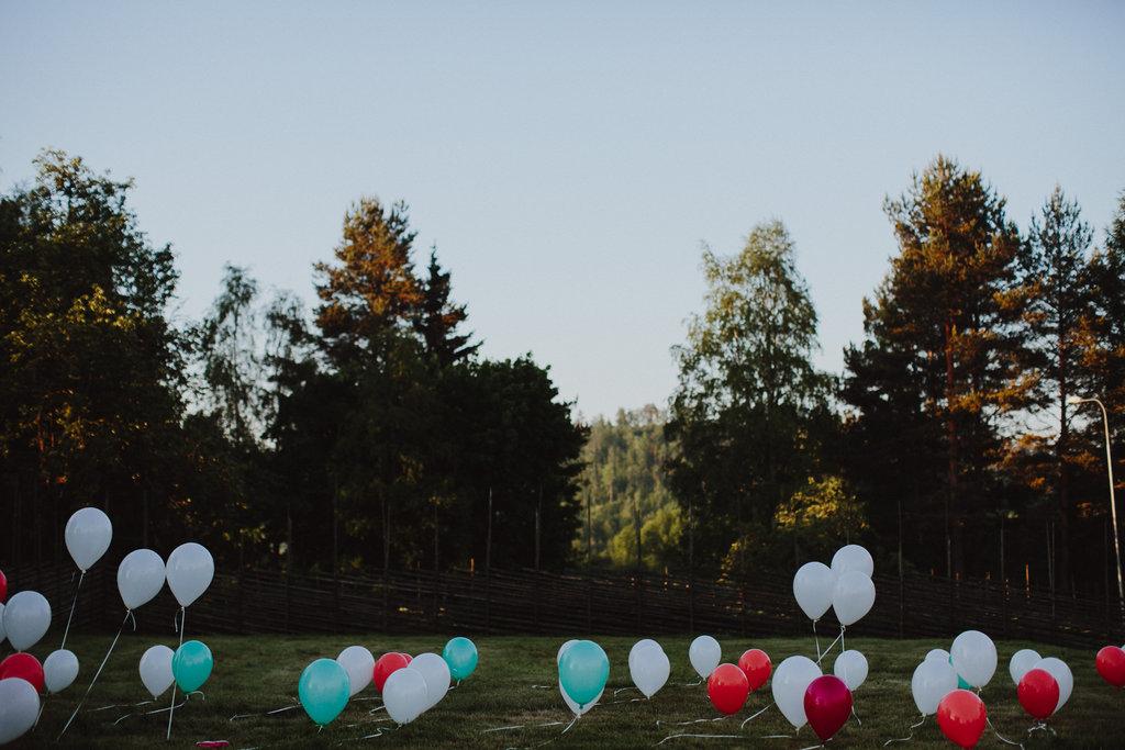 140607_wedding_emelie_gustav_pp-1657.jpg