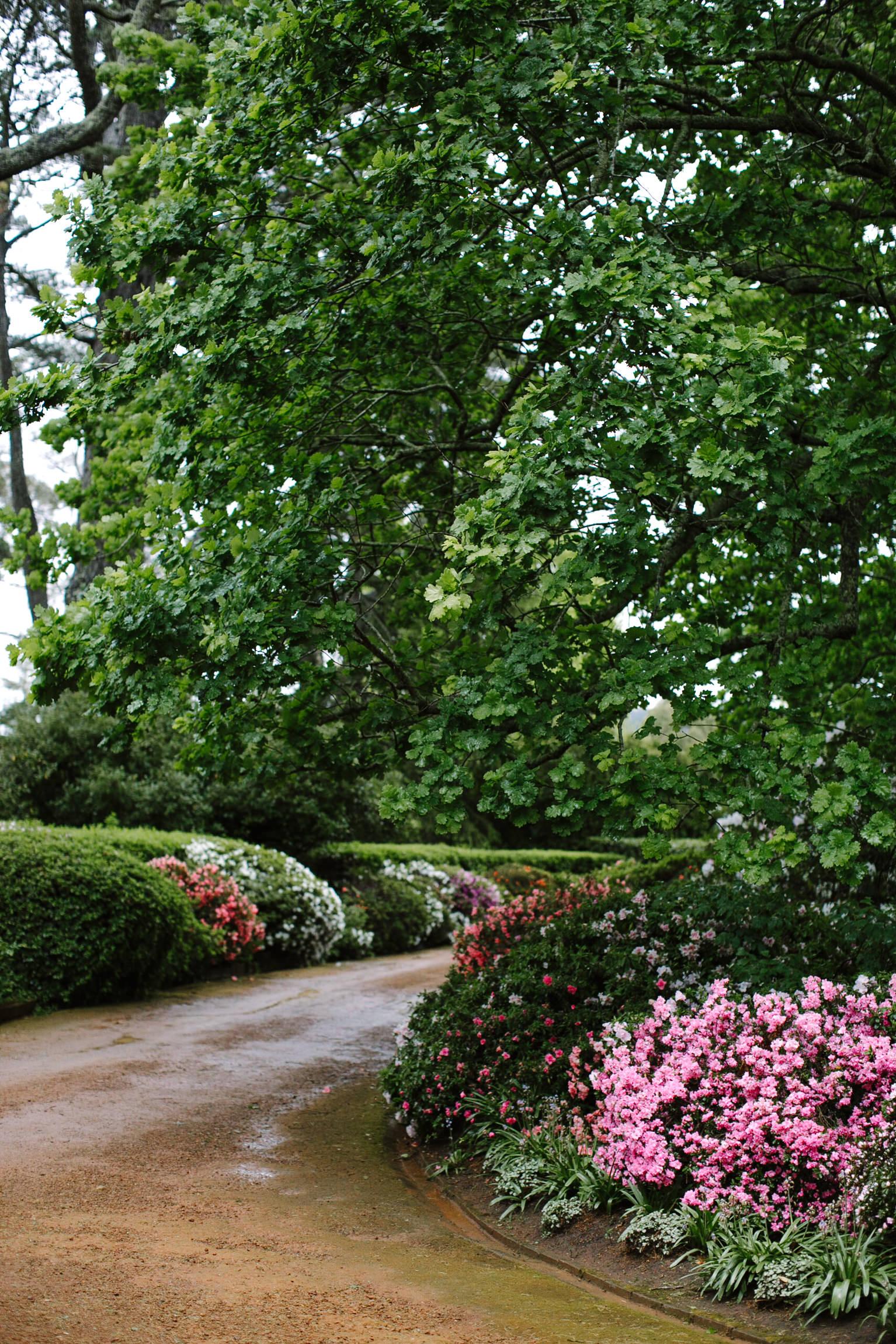 justinaaron-bendooley-estate-wedding-vanessa-dom-017.jpg