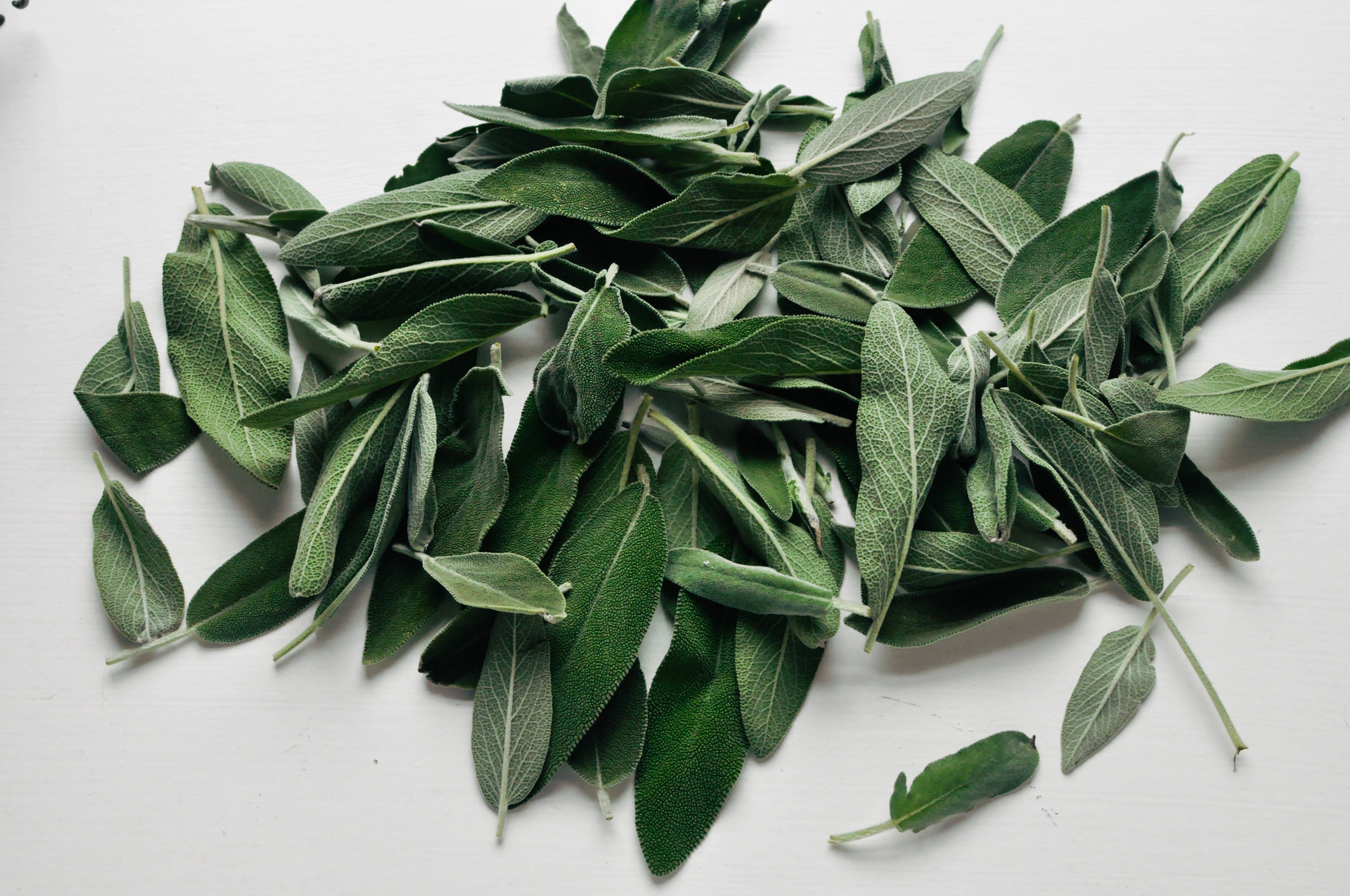 DIY Sage Wreath | This Healthy Table