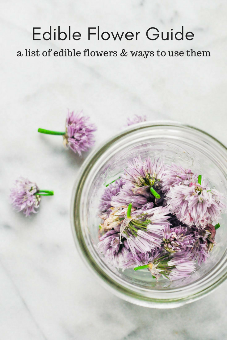 A guide to edible flowers - which ones to eat and ways to use them | This Healthy Table