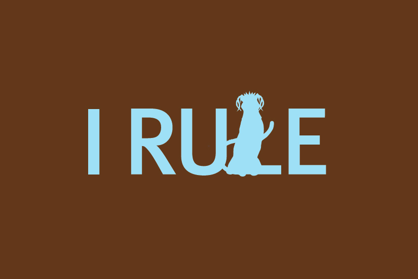 Judge-Irule.jpg