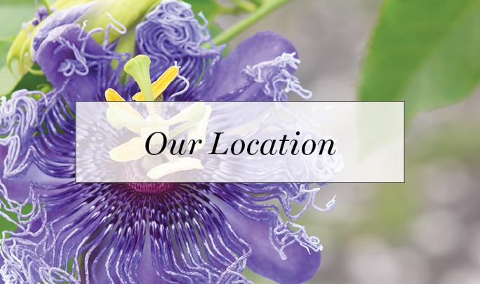 Location.jpg