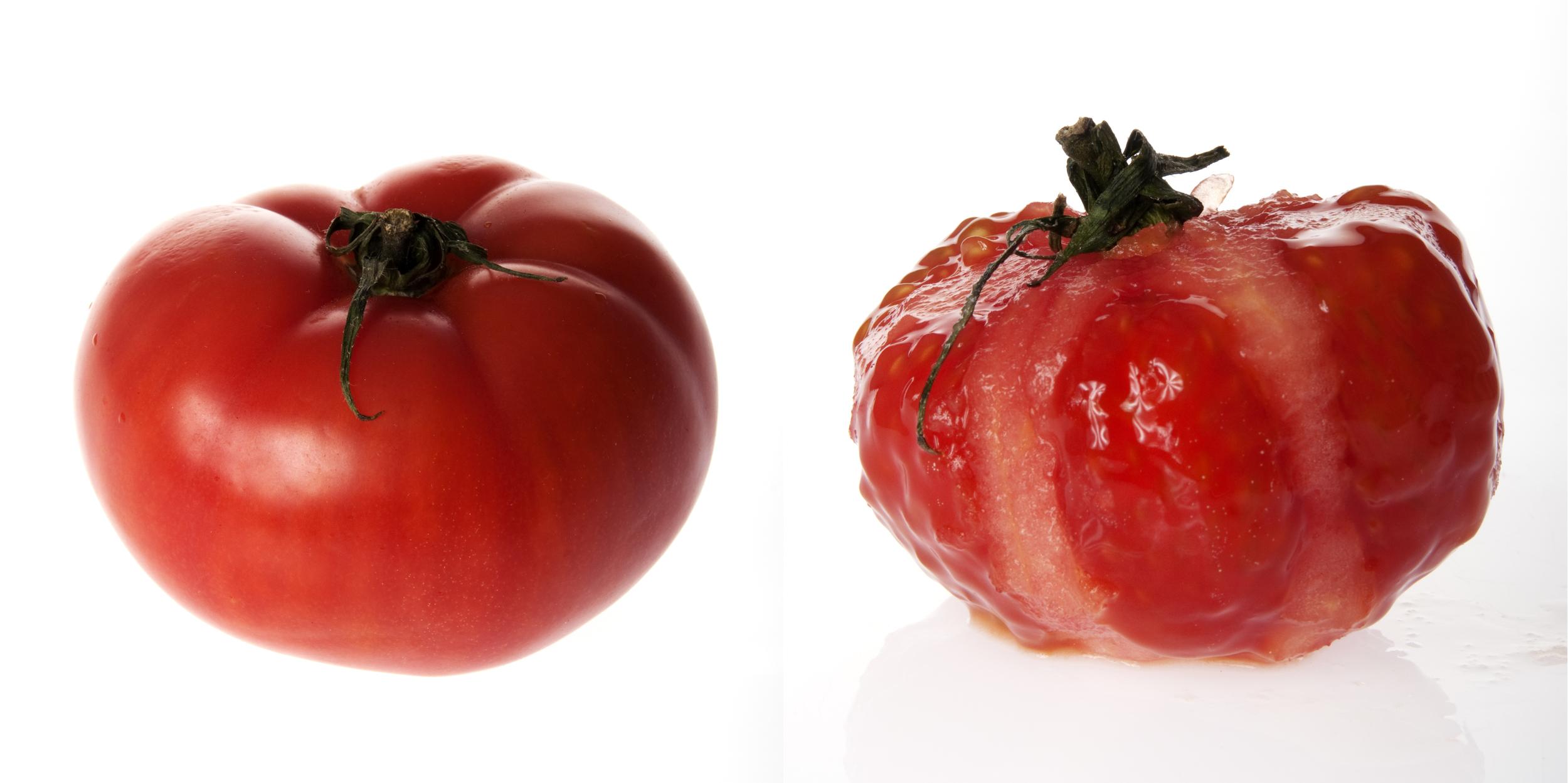 tomato_dyp.jpg