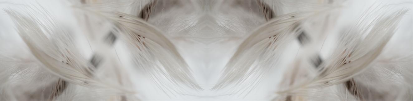 Screen Shot 2014-11-14 at 12.43.18 PM.png