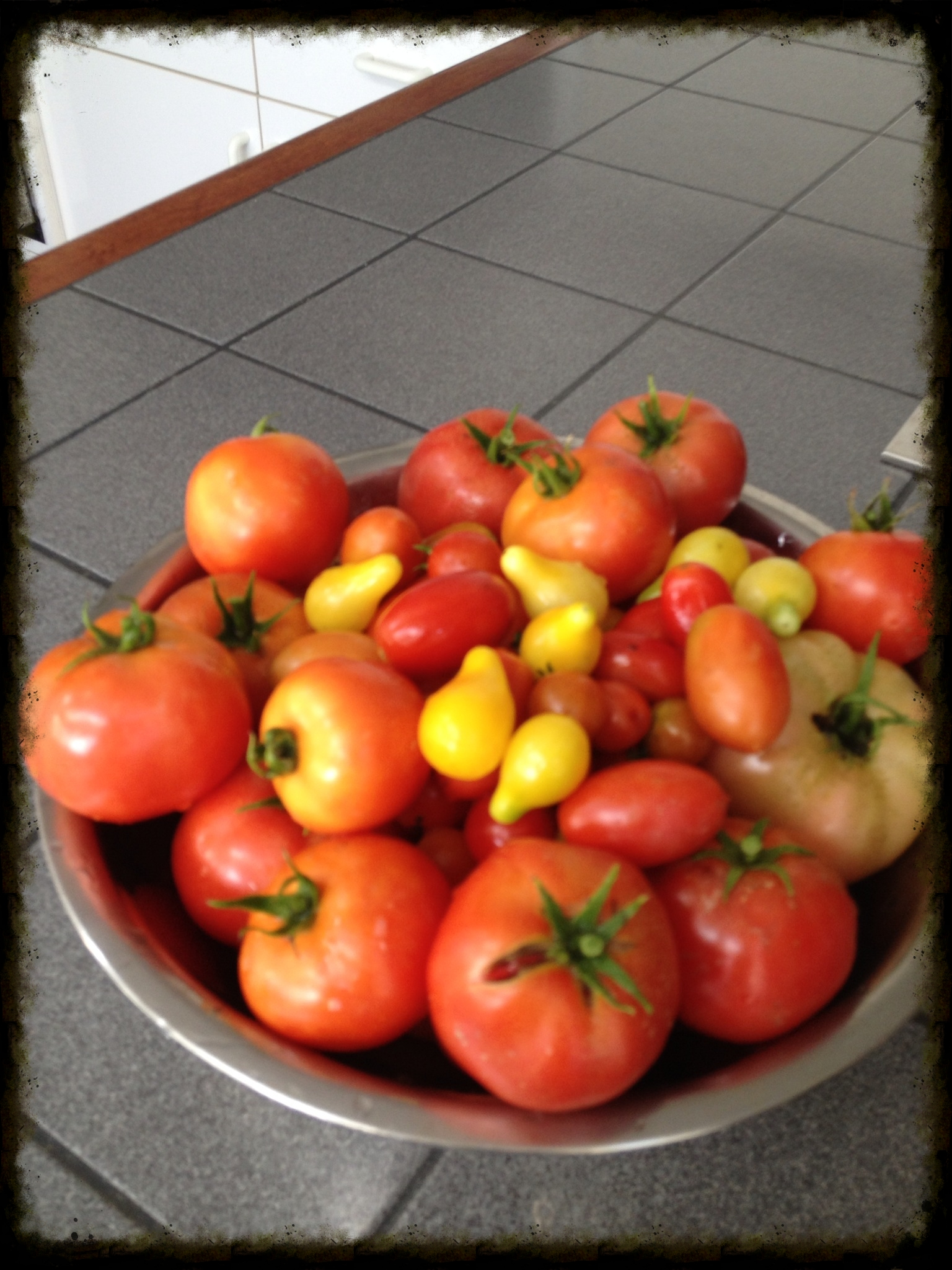 Tomatoes from my garden.