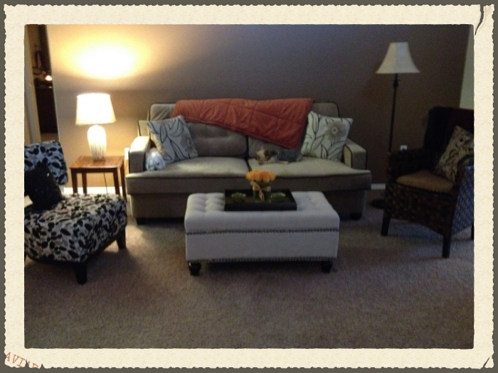 I love the little wicker chair and the sofa fabric is washable. McCall and Stella give it a thumbs up!