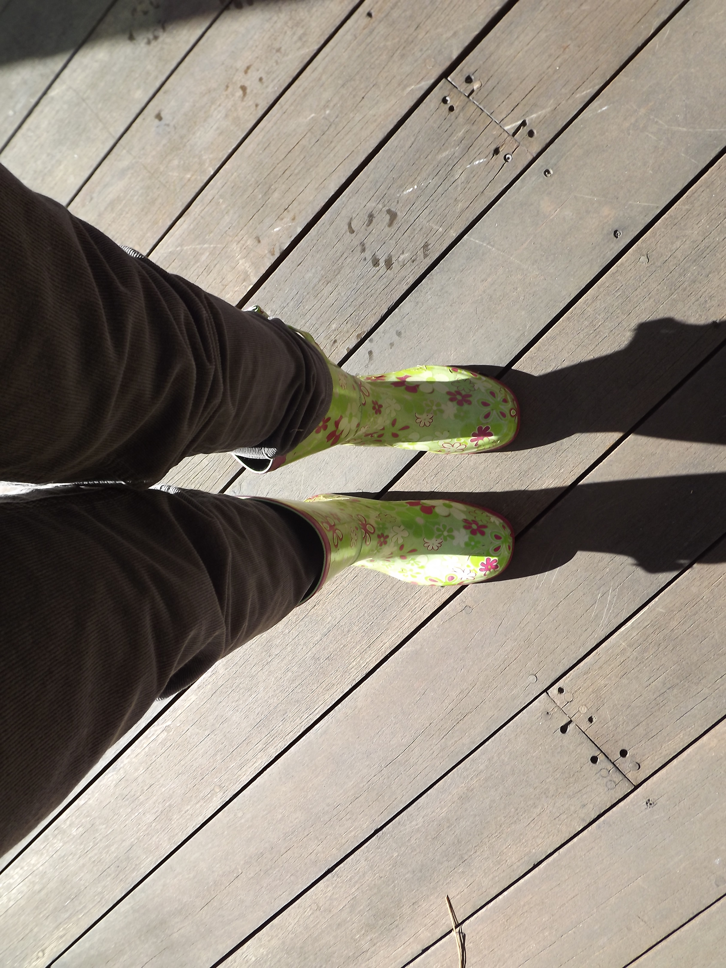 Rain boots from Target several years ago.