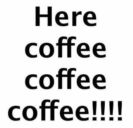 Every single morning