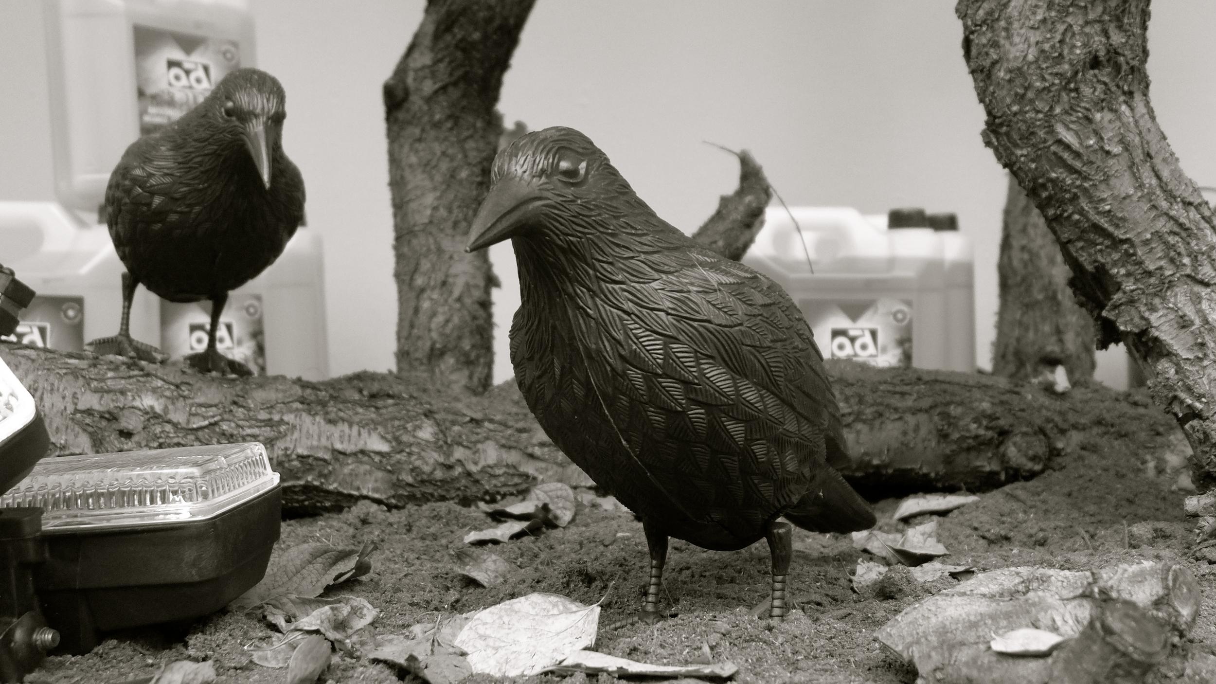 Recambios Gran Vía cuervos - 2