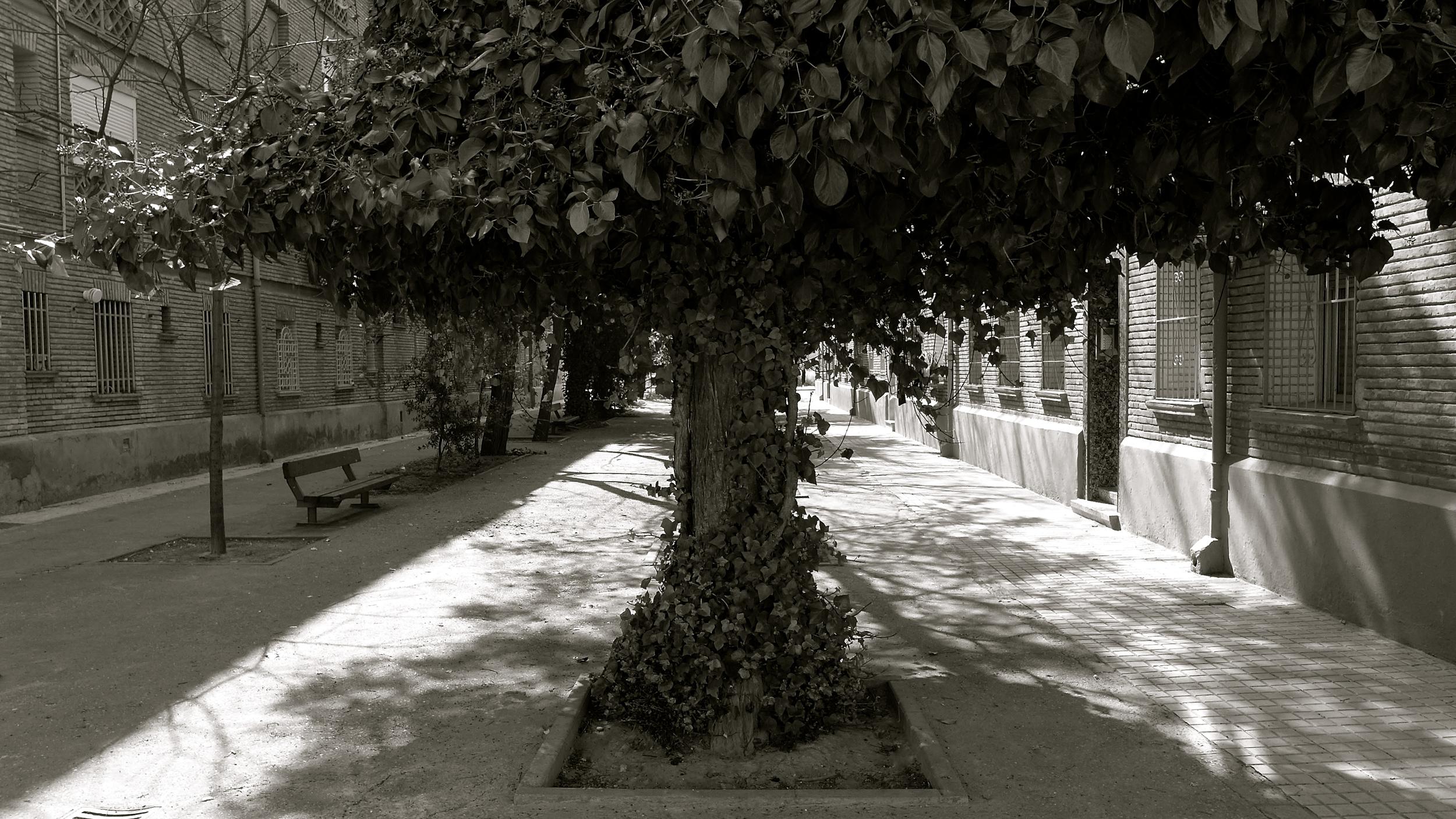 Calle de Benasque - 1