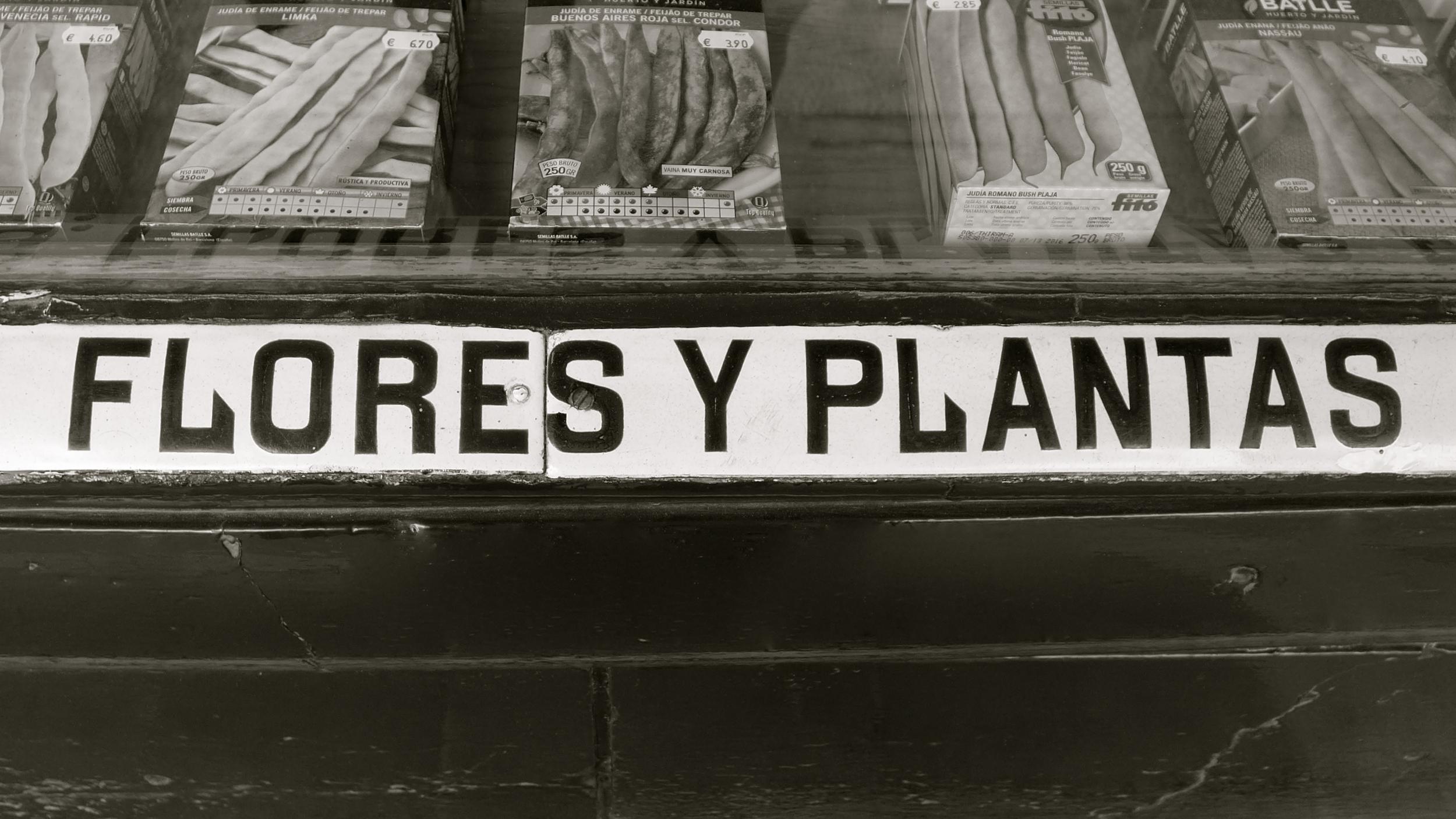 Flores Mercado - 06