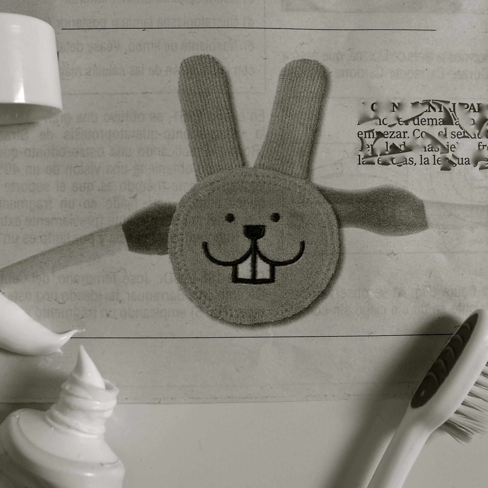 Conejo higiene dental - 3