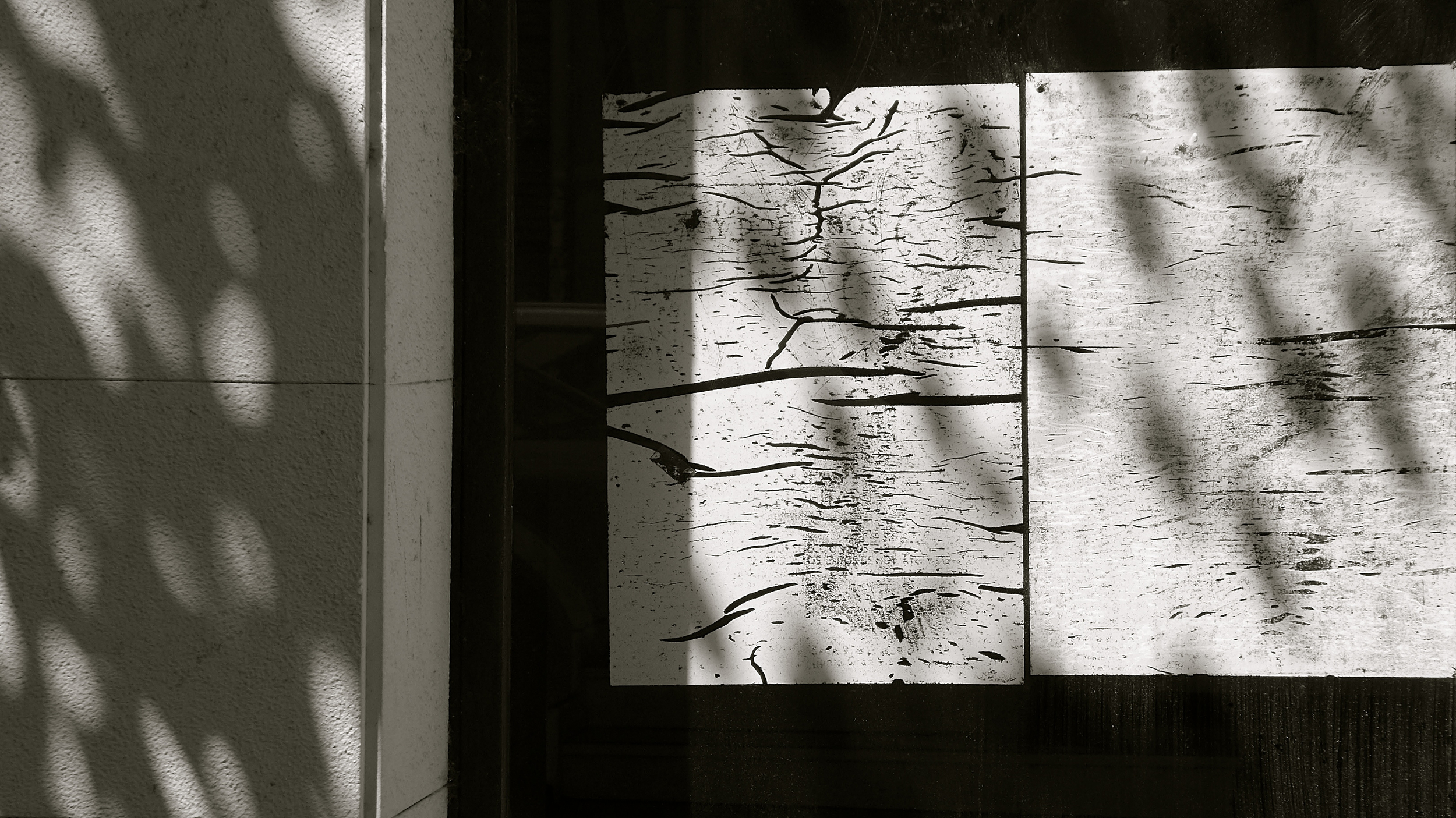 Sombras de amor - 2