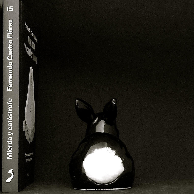 Conejo libro Castro Flórez - 01