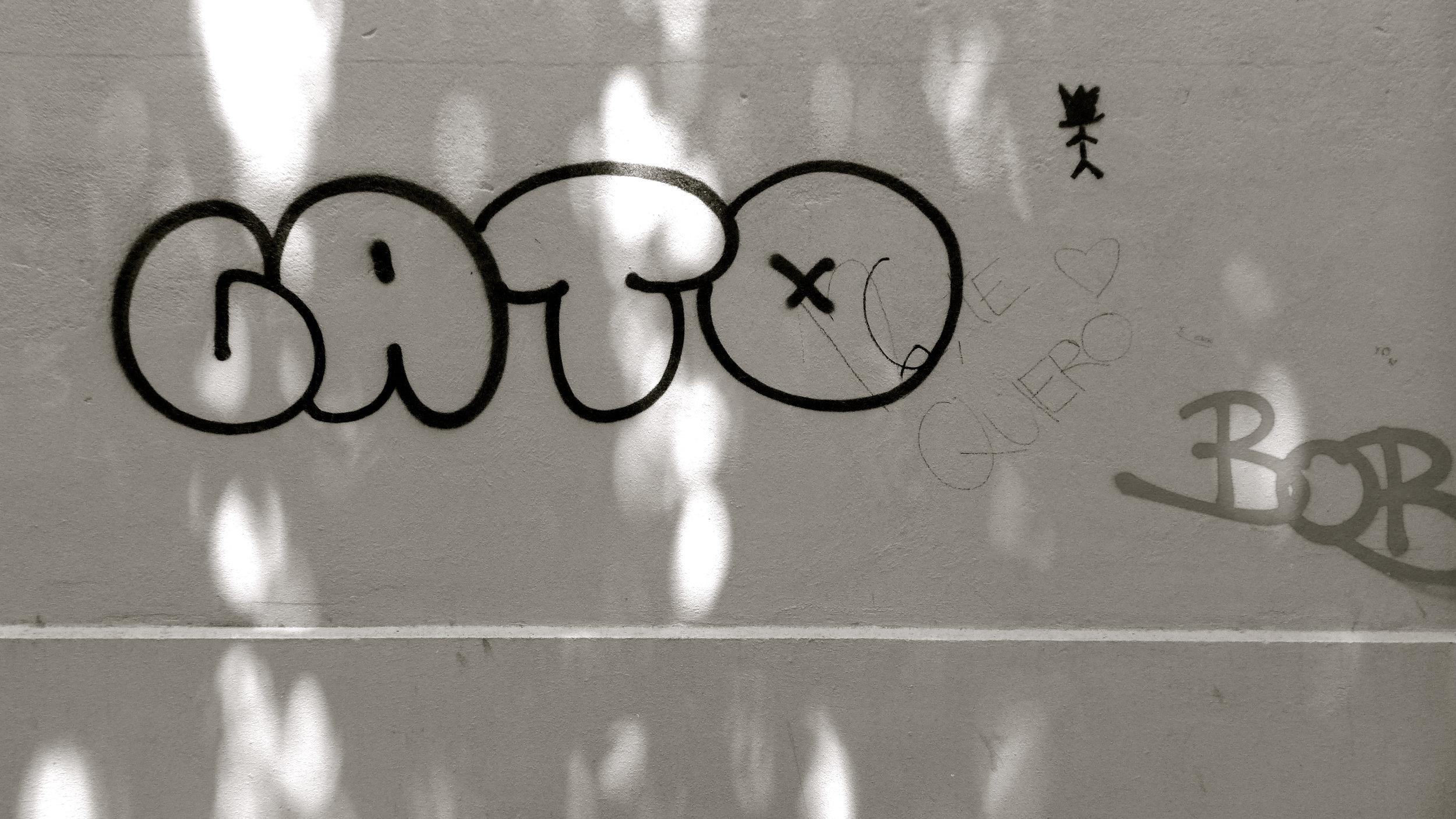 Graffiti Gato