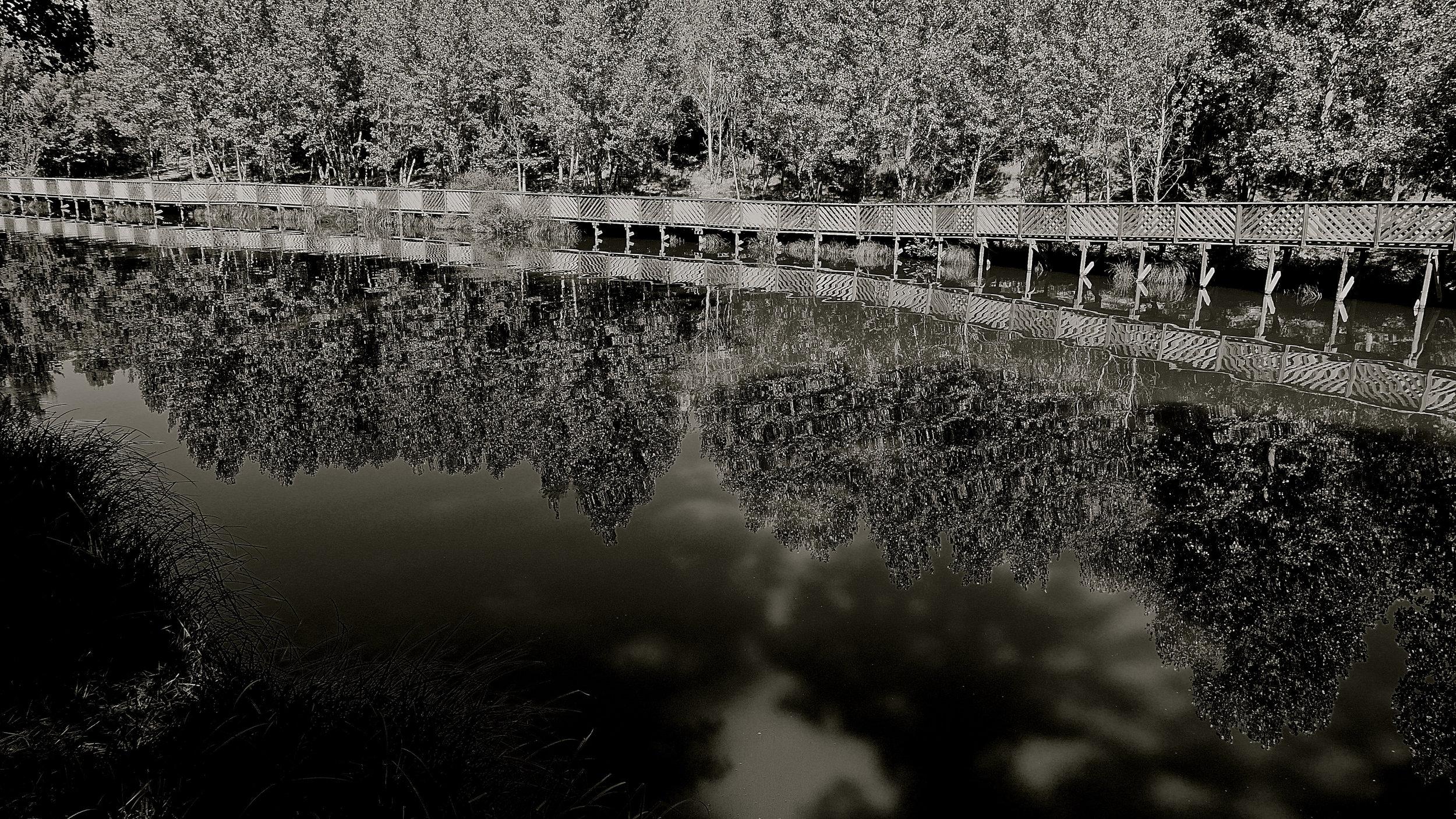 Reflejados X Duero