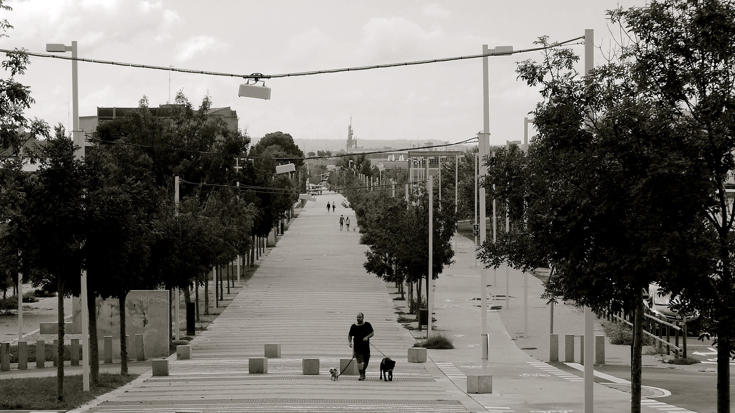 Paseo perros Oliver