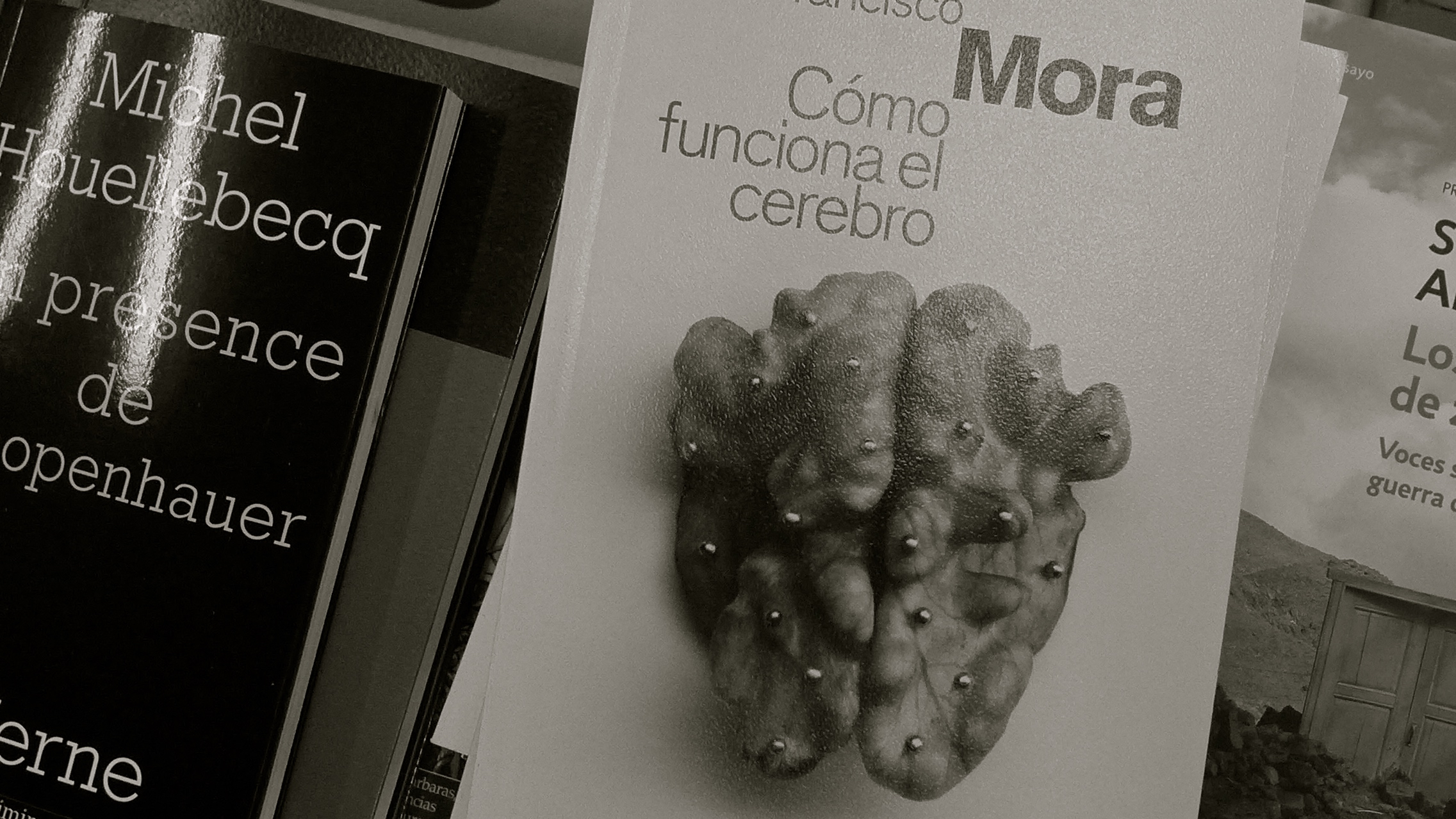 Houellebecq / Mora