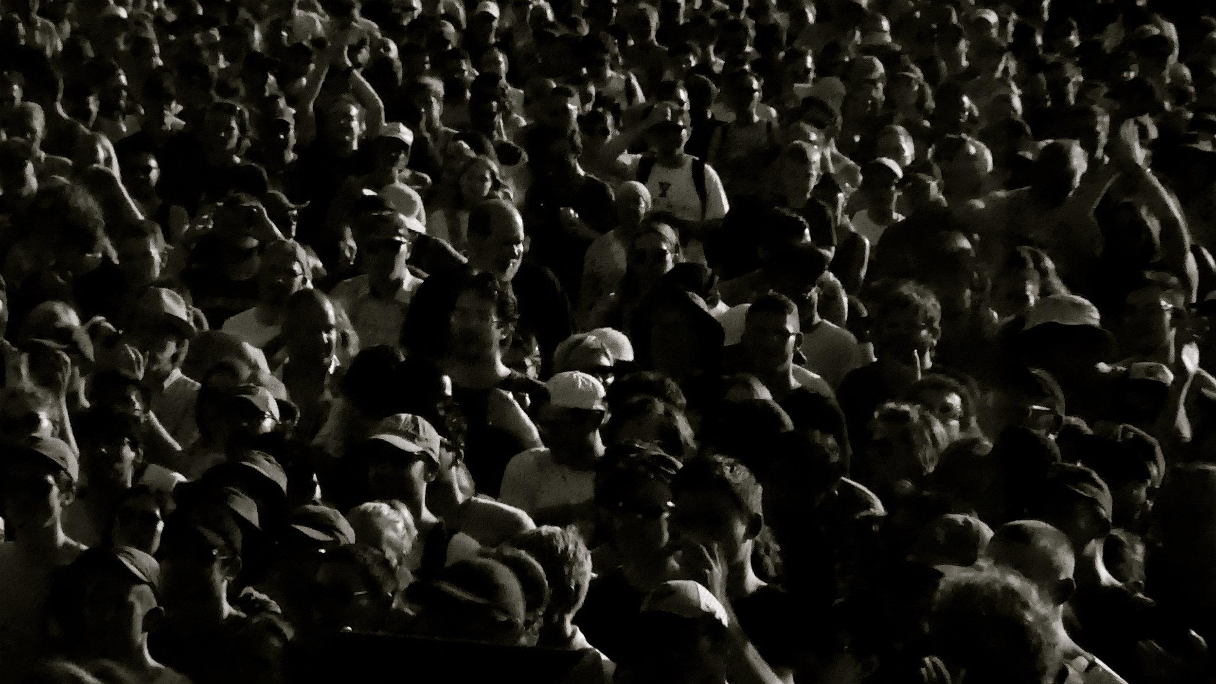 Stereolab live at Pitchfork Music Festival 2019 -09Multitud 2