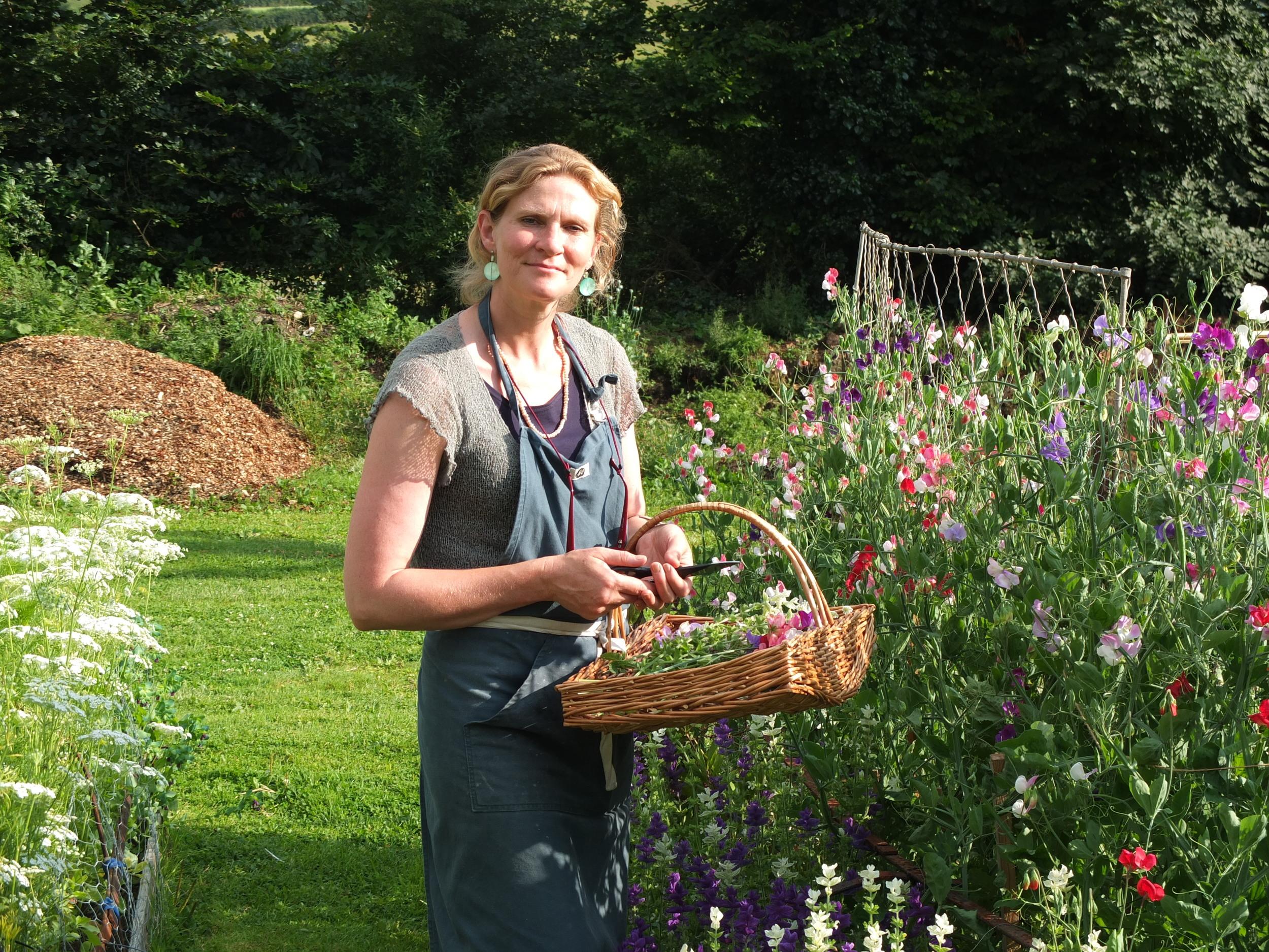 Sarah's cutting garden
