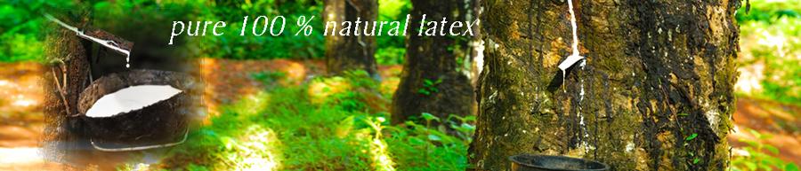 NaturalLatexTreeSap.jpg