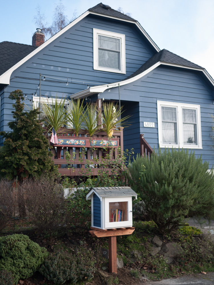 The Little Free Library stands proudly in its new home.