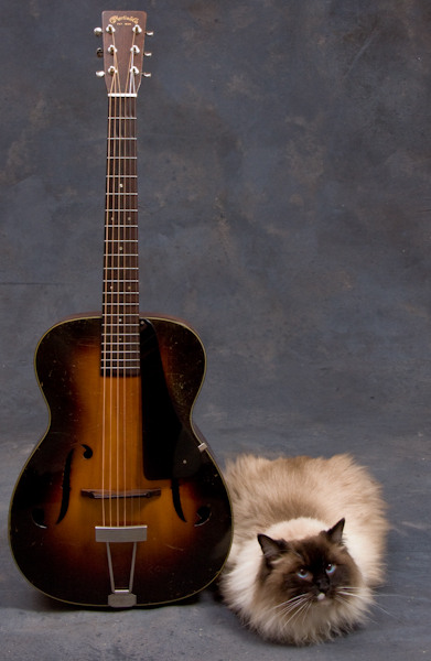 Blue and 1937 Martin R-18