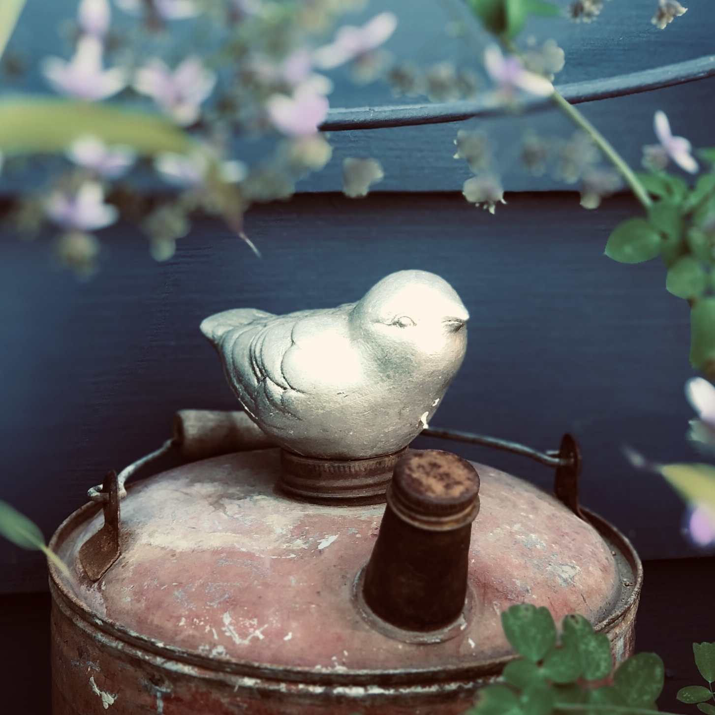 wonderland-bird-gascan.jpg
