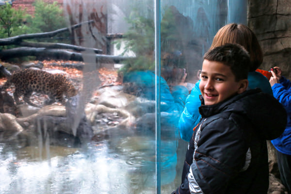 An elementary school student inside of the exhibit.