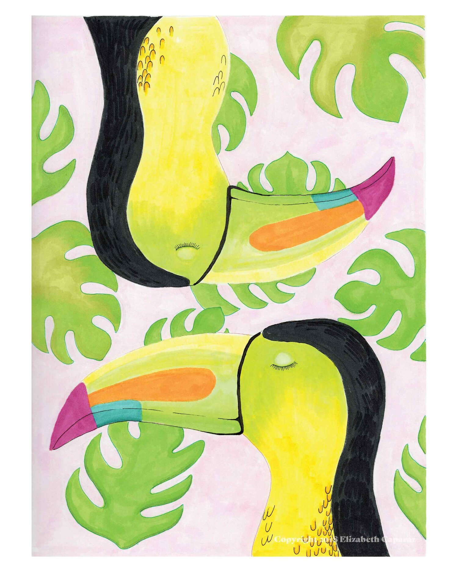 Two X Toucan