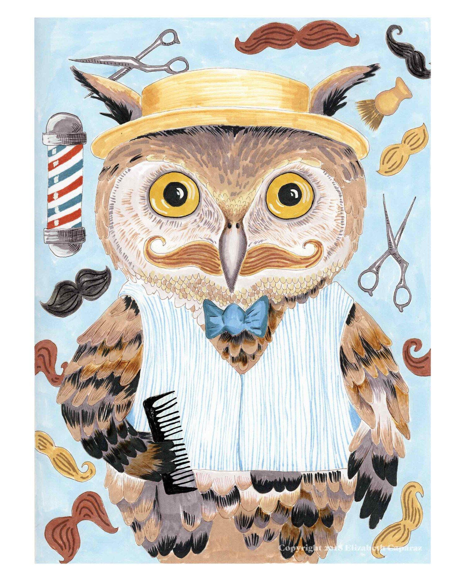 Mr. Owl Barbersworth