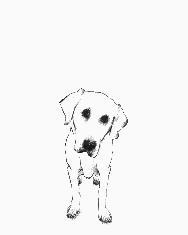 doggy1.jpg