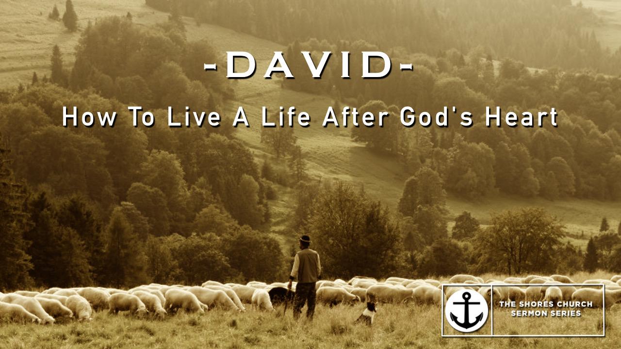 -David-.jpg