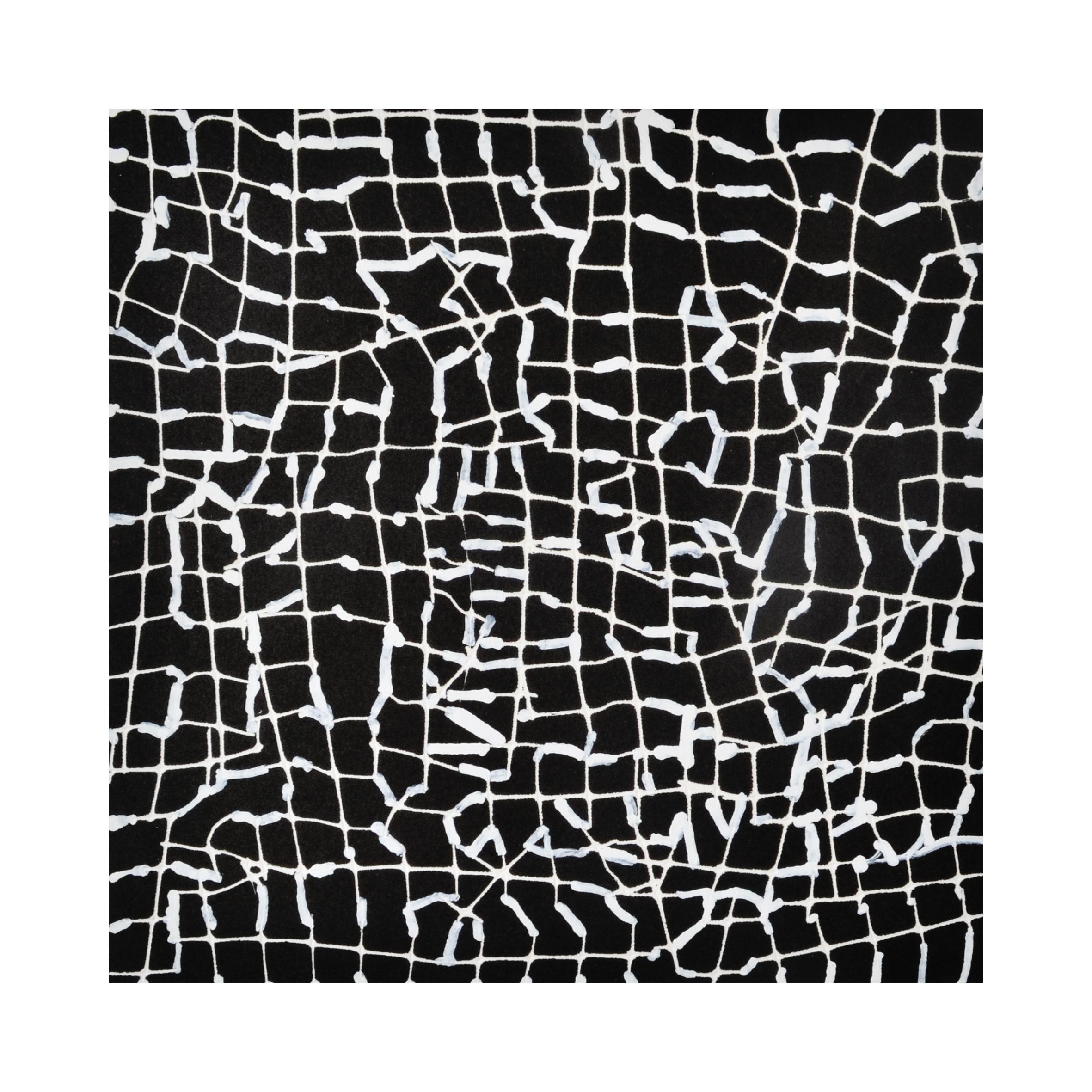 BOELE-KEIMER Black Net No.4 2015.jpg
