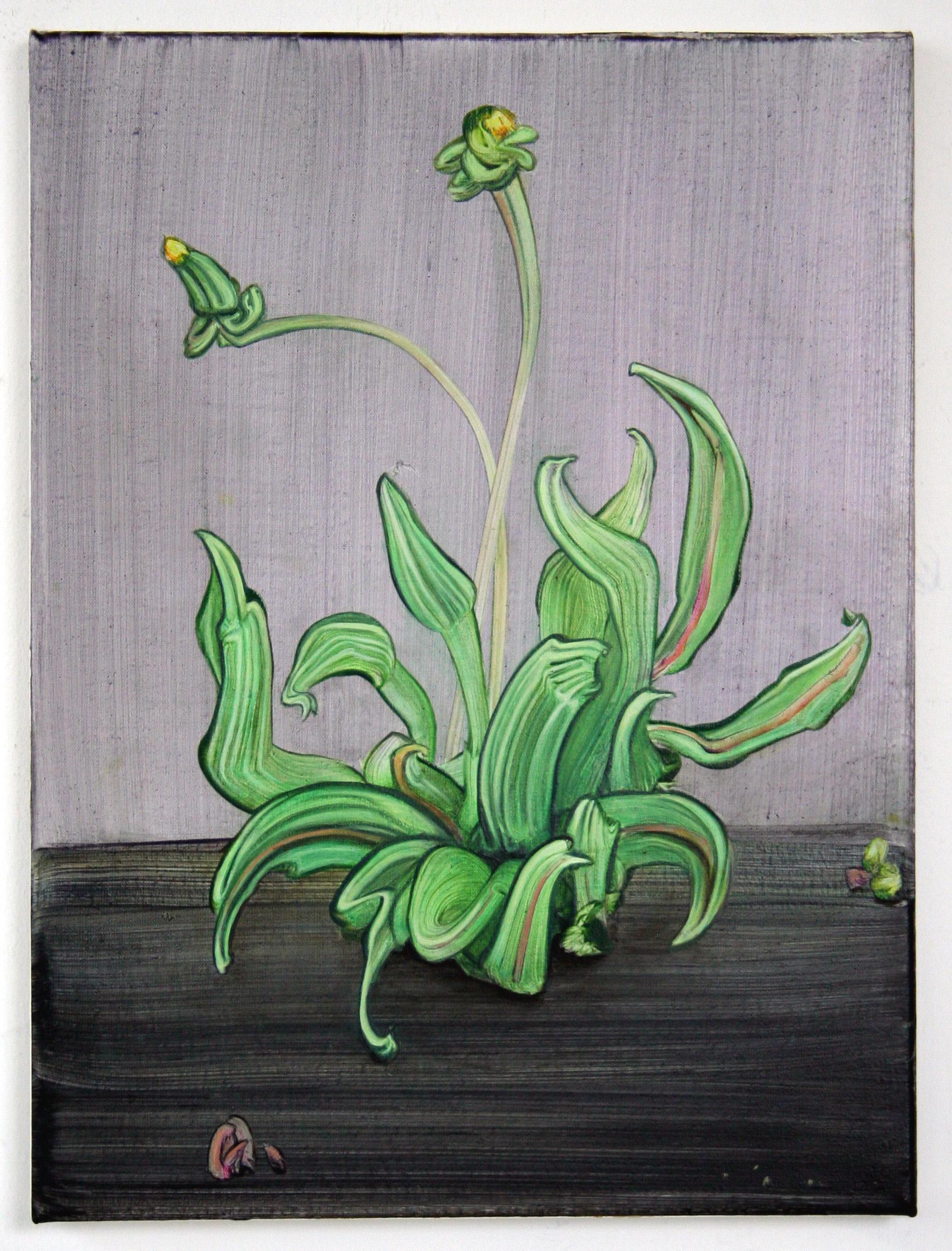 Dandelion, 2015, oil on canvas