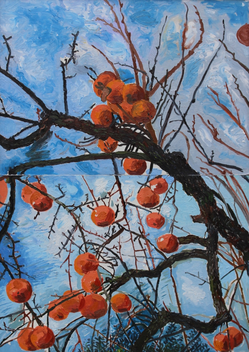 Persimmons in Tuscan Winter, oil on board, 34 x 24 cm