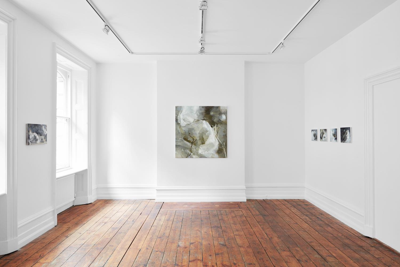 01- Claudia Carr - Opened Ground - Jessica Carlisle Gallery.jpg